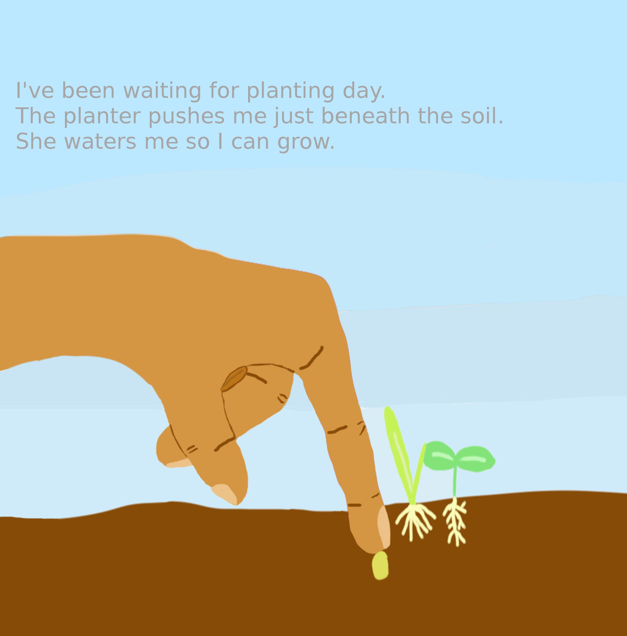 1planting